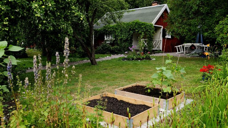 Lättskött trädgård är drömmen, trädgårdstomtar värst av allt